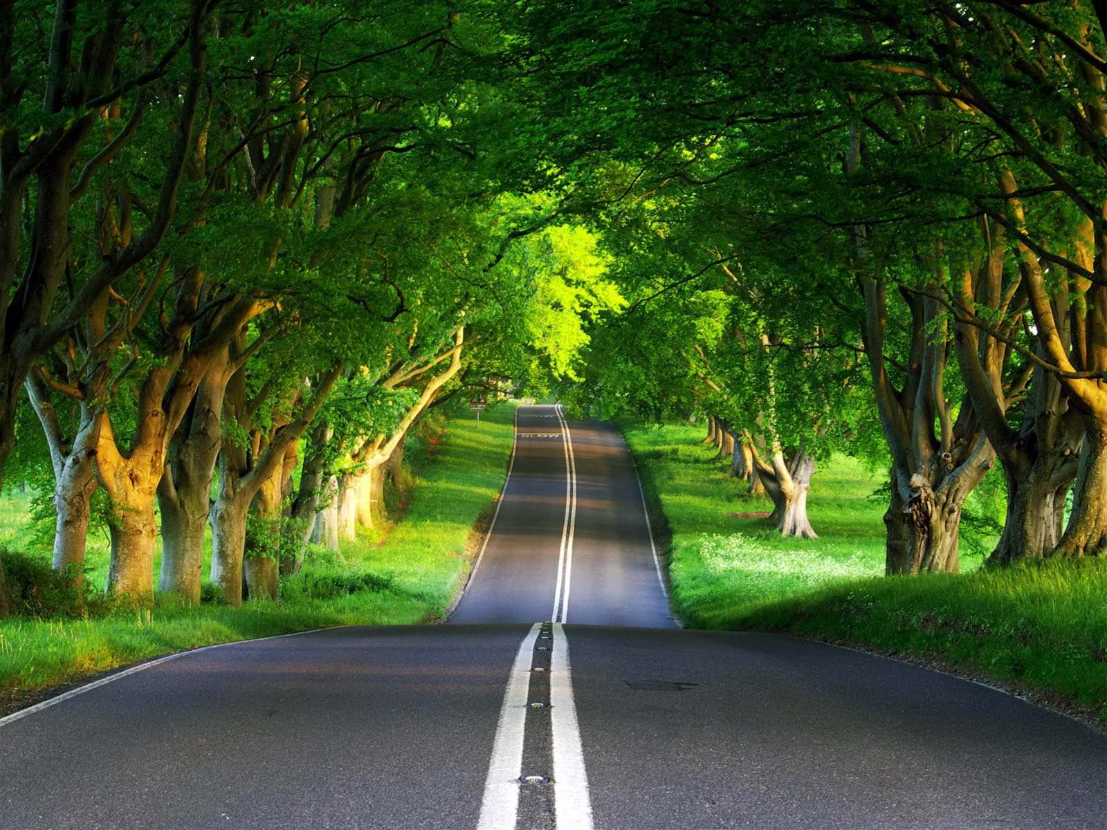 road-9